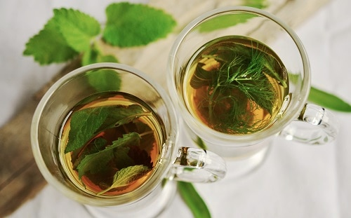 herbs in drinking glass